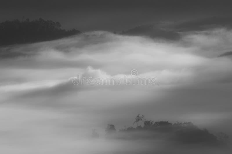 Mystic mist valley in Thailand stock photos
