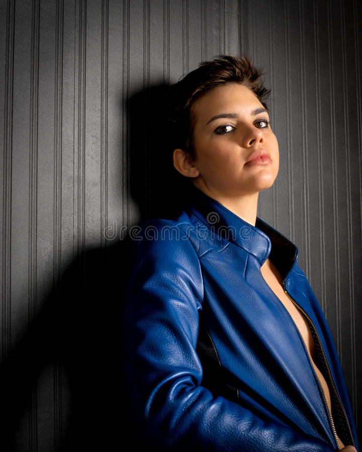 Beautiful Native American Female Portrait stock images