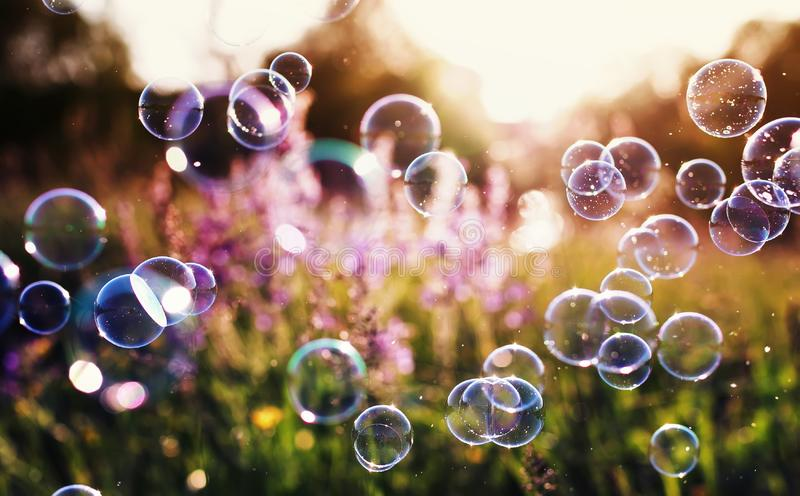 Beautiful natural background with summer clear green meadow with pink flowers and soap bubbles brightly shimmer and fly in the air royalty free stock images