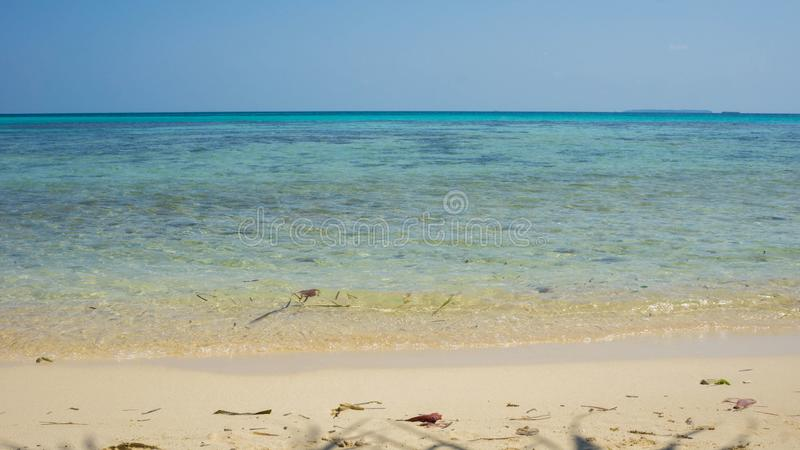 A beautiful natural beach in karimun jawa or java island with sunny day and vlear blue and green sea stock image