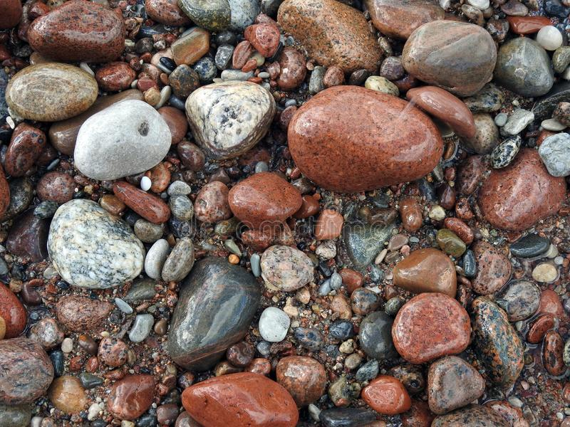 Colorful natural stones near sea, Lithuania royalty free stock images