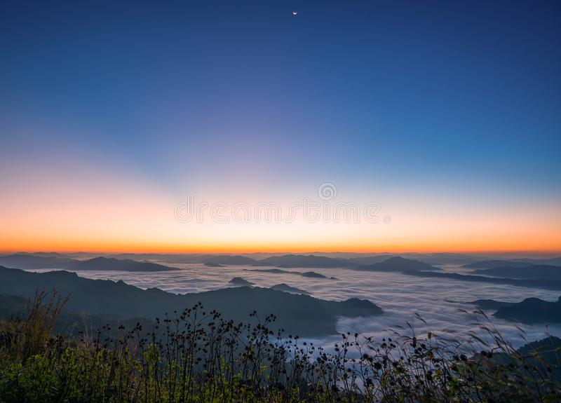 Beautiful natural landscape Sea fog With the first morning sun bright Mountain stock photos