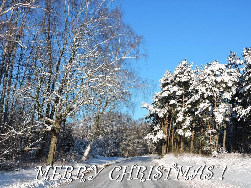 Merry Christmas card done using trees and road in winter , Lithuania. Beautiful natural snowy trees, way and note - Merry Christmas royalty free stock images
