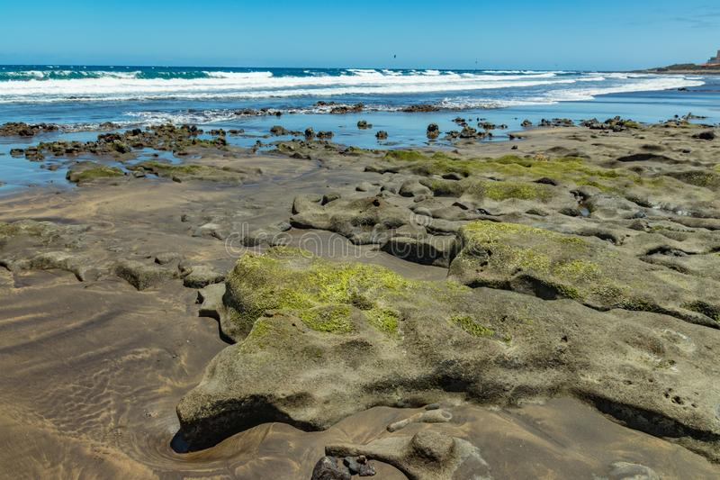 Beautiful natural southern coastline with wildlife, rocks and beaches near El Medano. Sunny day, blue sky and white fluffy clouds stock photography
