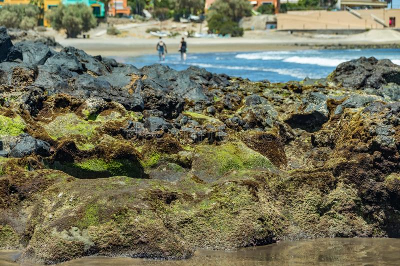 Beautiful natural southern coastline with wildlife, rocks and beaches near El Medano. Sunny day, gentle sea surf. Travel photo, royalty free stock image