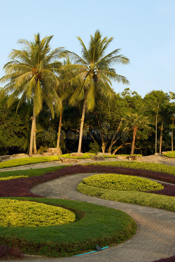 Beautiful natural tropical garden