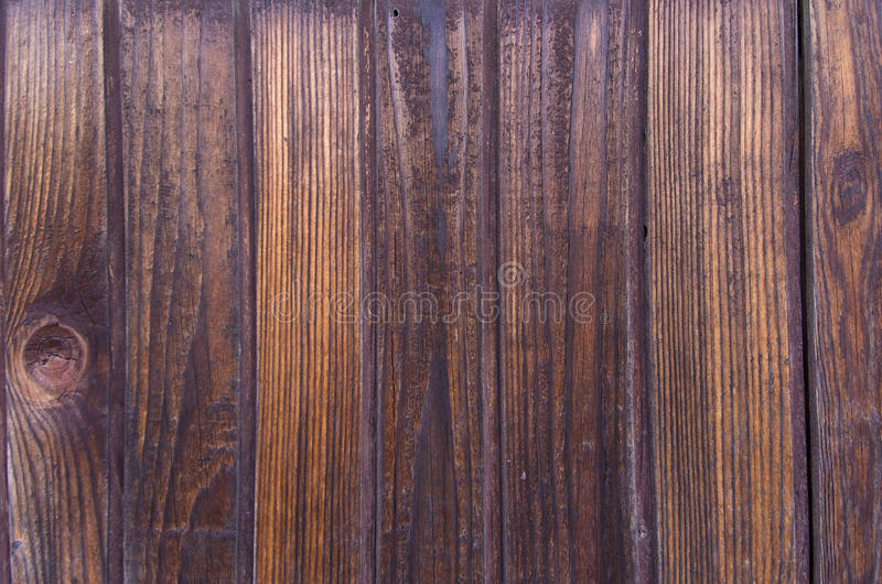 Beautiful natural wooden texture, vertical lines stock image