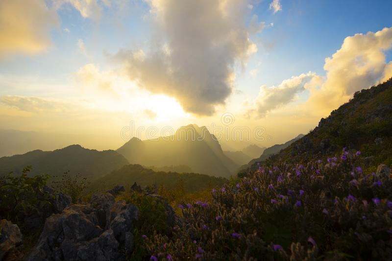 Beautiful nature background sunset at Doi Luang Chiangdao royalty free stock images