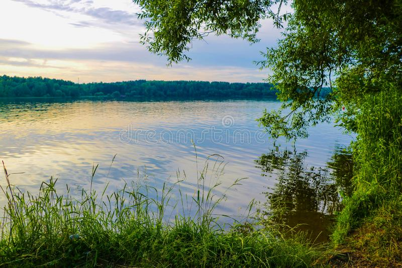 Beautiful nature background, sunset. Summer grass. Wild nature. God. Sun rays. Magical background stock photo