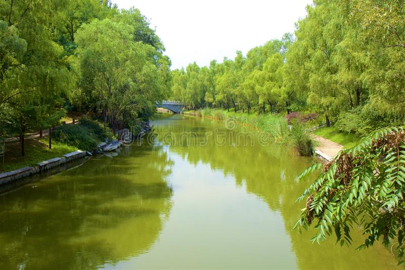 Chaoyang park, Beijing. Beautiful nature in Chaoyang park, Beijing, China royalty free stock photo