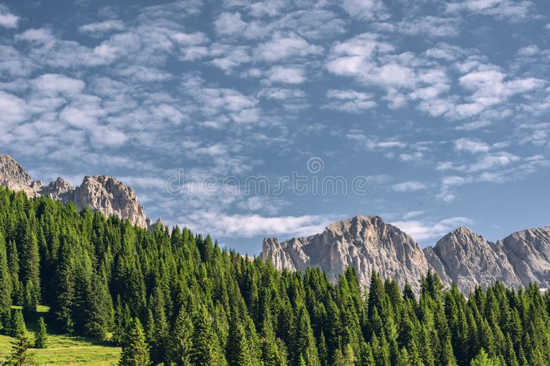 Beautiful nature with green forest near mountain. Scenery nature with green pine tree forest near high rocky mountain, under white clouds on blue sky in Alps royalty free stock images