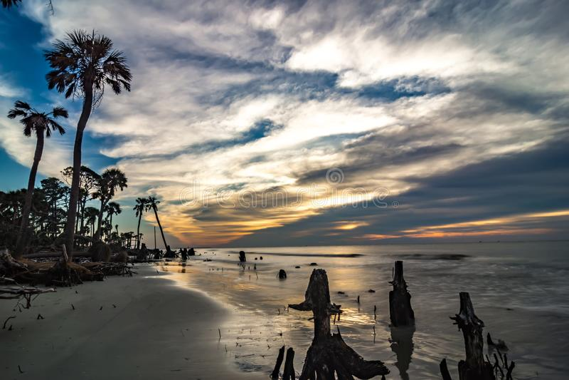 Beautiful nature on hunting island south carolina royalty free stock image