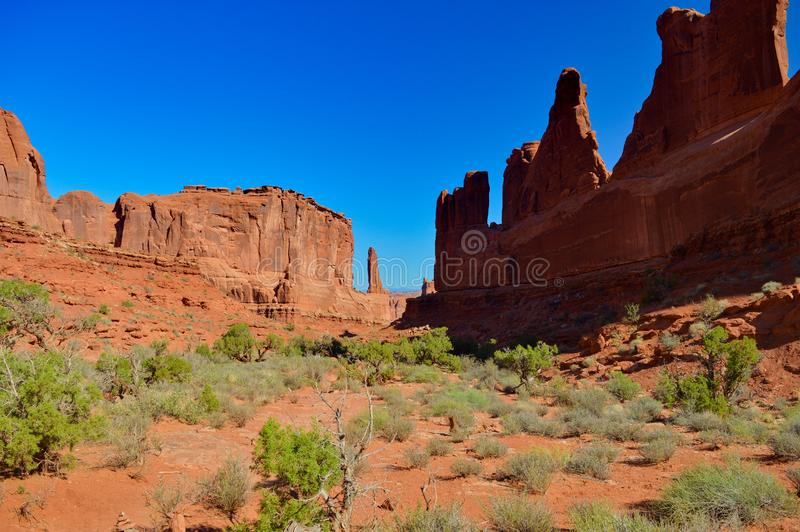 Nature in the Arches national park royalty free stock photography