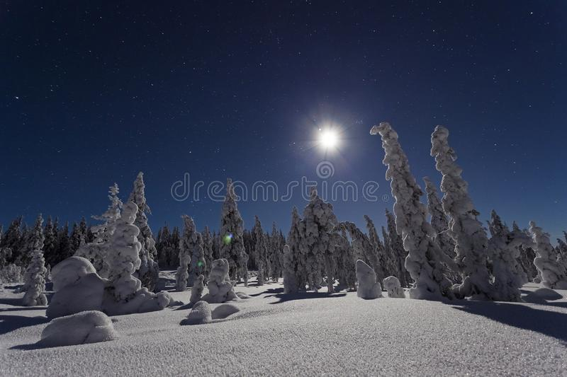 Beautiful nature and landscape photo of Sweden Scandinavia at cold winter night. Beautiful nature and landscape photo of Sweden Scandinavia. Nice cold winter stock images