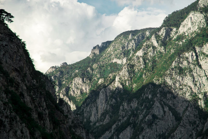 Beautiful nature landscape, rocks mountains with green forest stock photography
