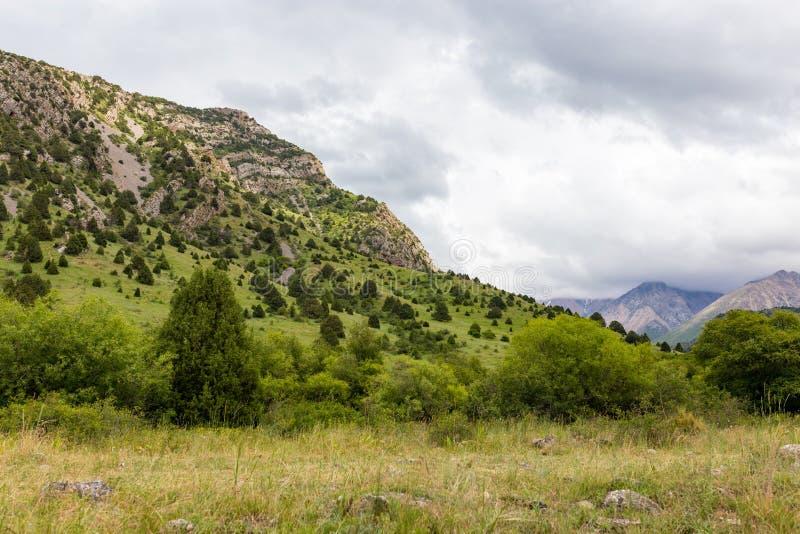 Beautiful nature in the mountains of Kazakhstan stock photos