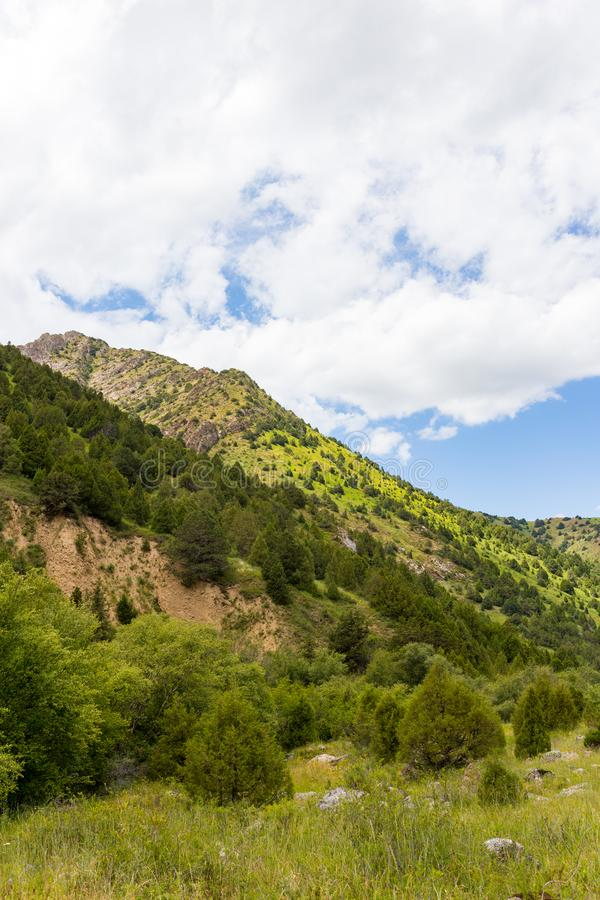 Beautiful nature in the mountains of Kazakhstan royalty free stock photos