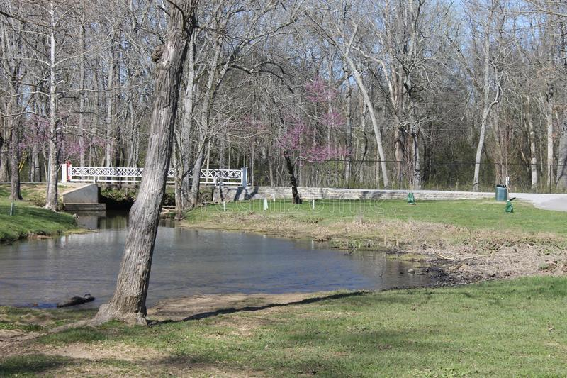 Sunny day at the river perfet day to be at the park royalty free stock photo
