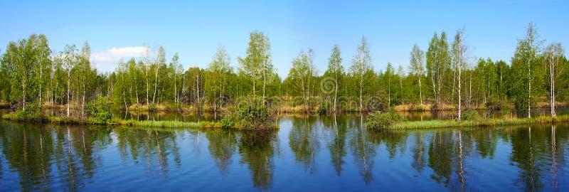 Beautiful nature, panoramic scenery. Small Rivers of Russia, Kostromskay area royalty free stock photos