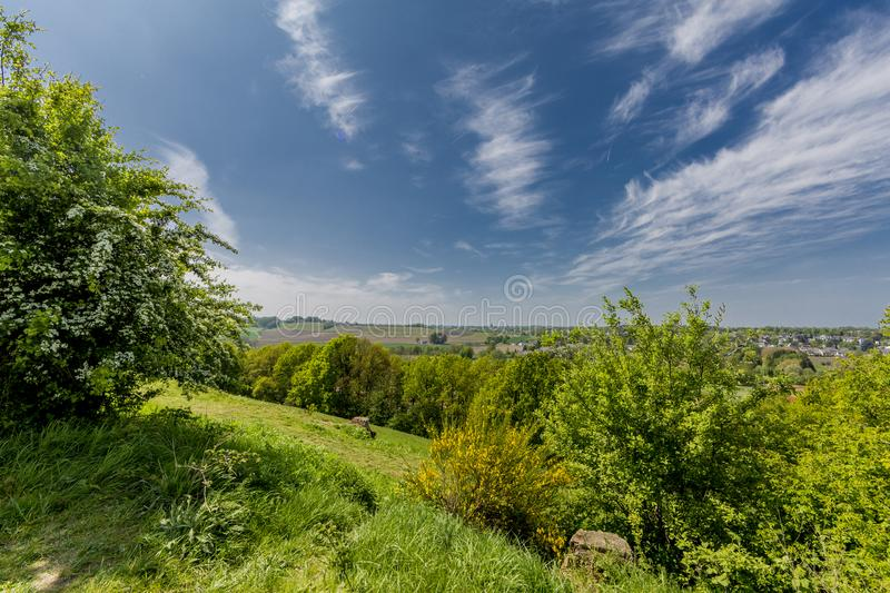 Beautiful nature in Sint-Pietersberg on a wonderful sunny day. With an amazing blue sky and white clouds in Maastricht South Limburg in the Netherlands Holland stock image
