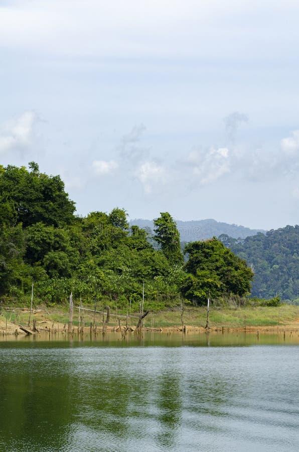 Tropical rain-forest at Royal Belum State Park, Perak Malaysia. Beautiful nature of tropical rain-forest at Royal Belum State Park, Perak Malaysia stock photo