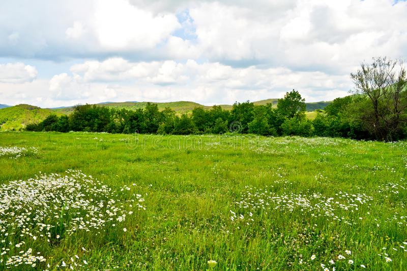 Download Beautiful nature view stock image. Image of shadow, horizon - 39503669