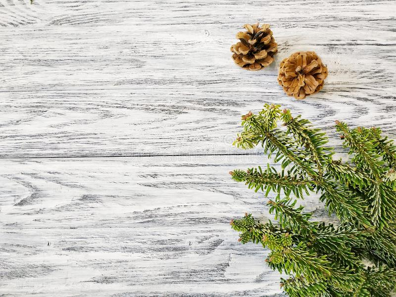 Pine twigs with forest cones on a white wooden background. Beautiful winter pattern royalty free stock images