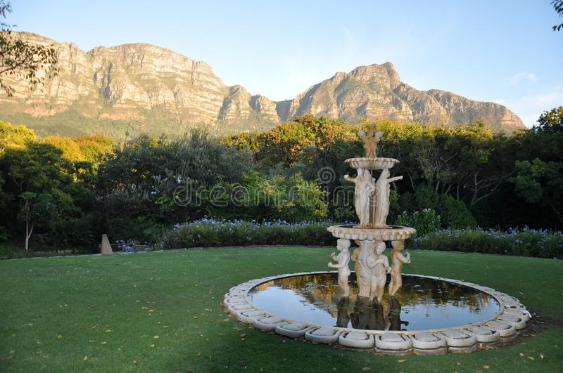 Beautiful Newlands looking on Devils peak Capetown royalty free stock photo
