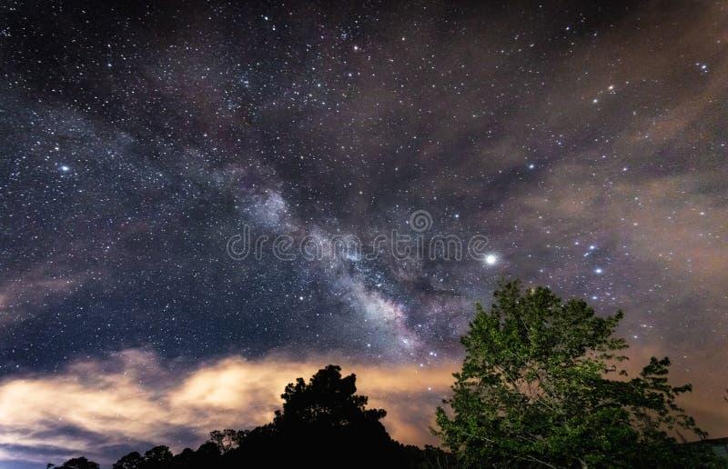 Beautiful night sky full of shining stars over the trees. The beautiful night sky full of shining stars over the trees royalty free stock photo