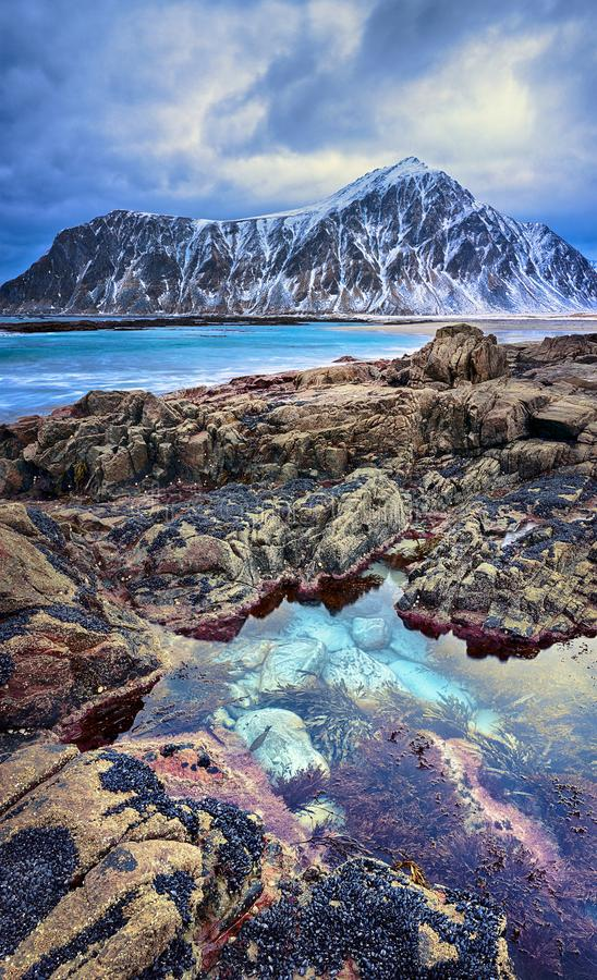 Beautiful Norway landscape of picturesque arctic beach in cold Norwegian Sea. Beautiful Norway landscape of picturesque arctic beach of Lofoten islands in cold royalty free stock images