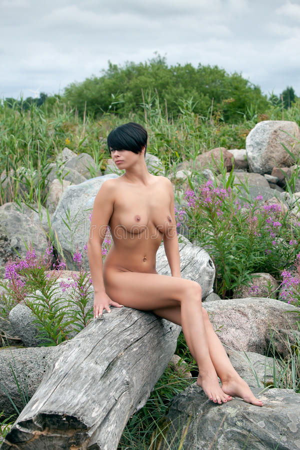Download Beautiful Nude Woman Sitting On An Old Tree Stock Image - Image of beautiful, driftwood: 22839715