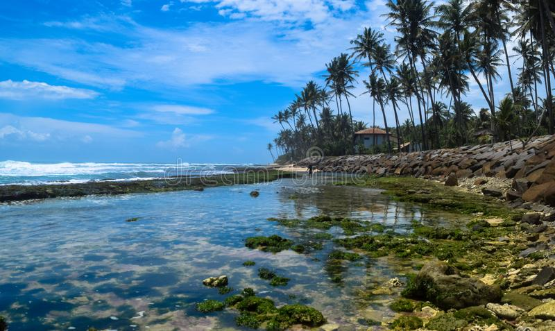 Beautiful Ocean And Beach With Coconut Tress.  royalty free stock photography