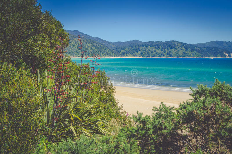 Beautiful ocean landscape with white sandy beach, soft greenery of New Zealand royalty free stock image