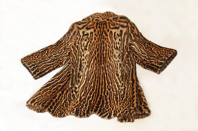 Download Beautiful ocelot fur coat stock photo. Image of jaguar - 29444708