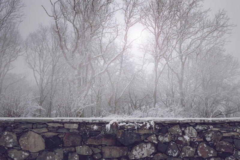 Beautiful old stone wall in front of misty winter forest. Snow and ice and a glimpze of sun shining through the haze royalty free stock photography