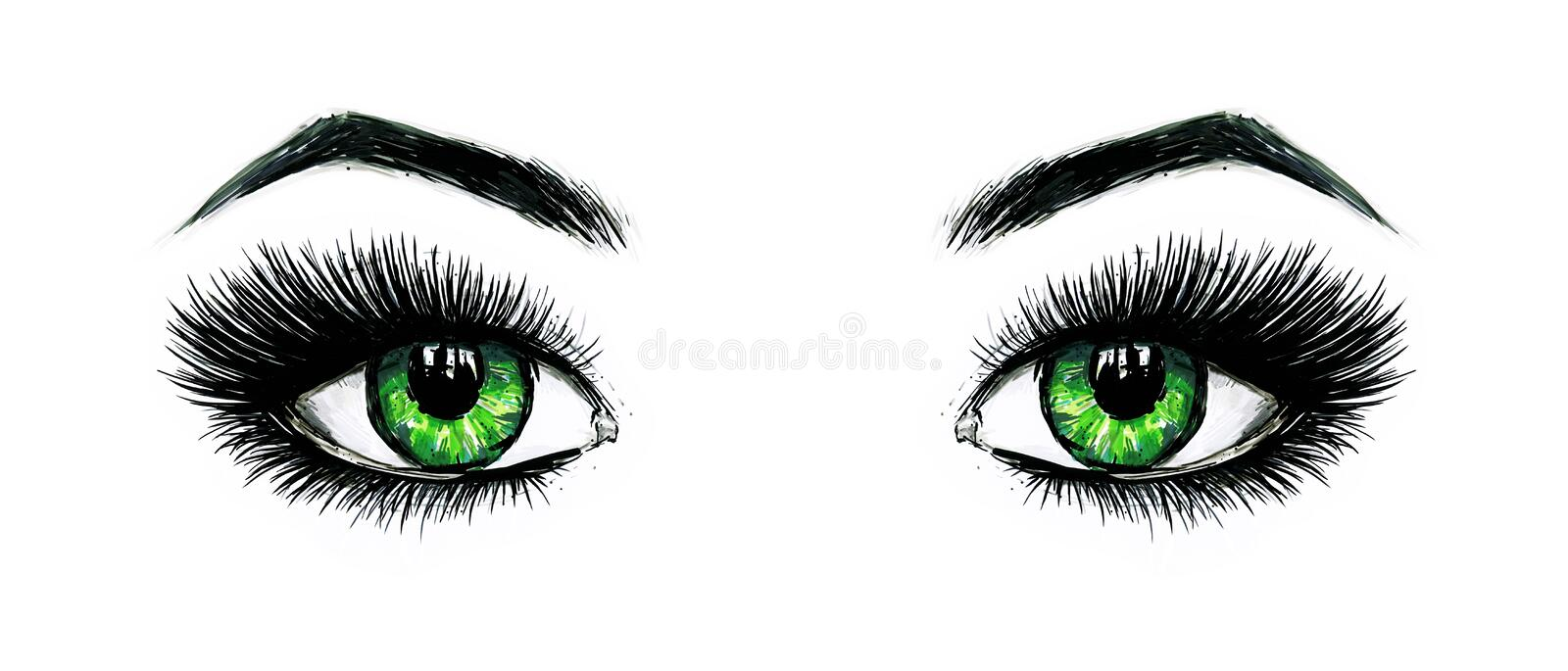 Beautiful open female green eyes with long eyelashes is isolated on a white background. Makeup template illustration. Color sketch royalty free illustration