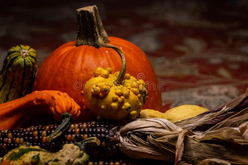 A beautiful, orange pumpkin surrounded by colorful flint corn, green squash, and golden, bumpy gourds on a autumnal tablecloth. royalty free stock photo