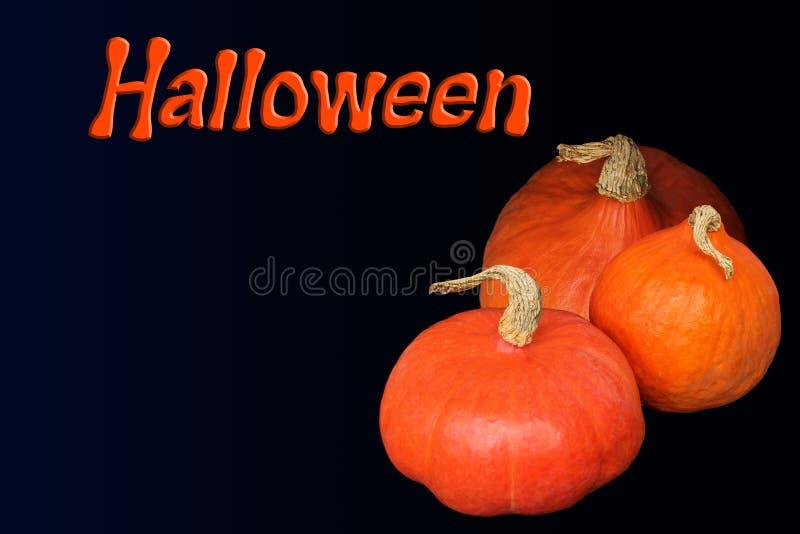 Beautiful orange pumpkins on a dark background and the inscription, postcard, menu, invitation, blank for the designer, a symbol royalty free stock image