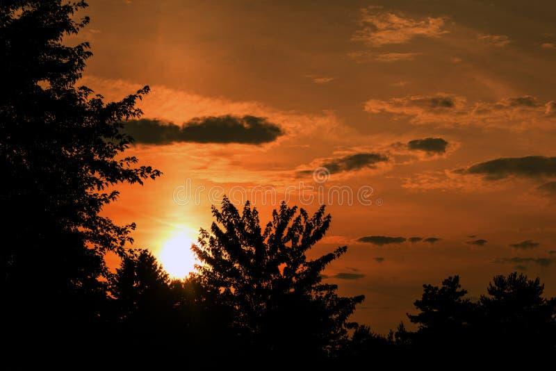Beautiful orange sunset royalty free stock image