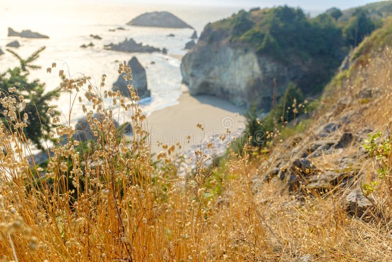 Beautiful Oregon Pacific Coastline. Near Bandon, Oregon, USA stock photo