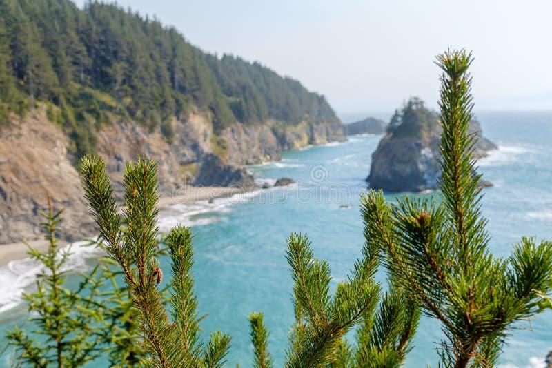 Beautiful Oregon Pacific Coastline. In Oregon, USA royalty free stock photography