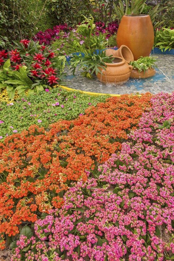 Beautiful ornamental Garden stock images