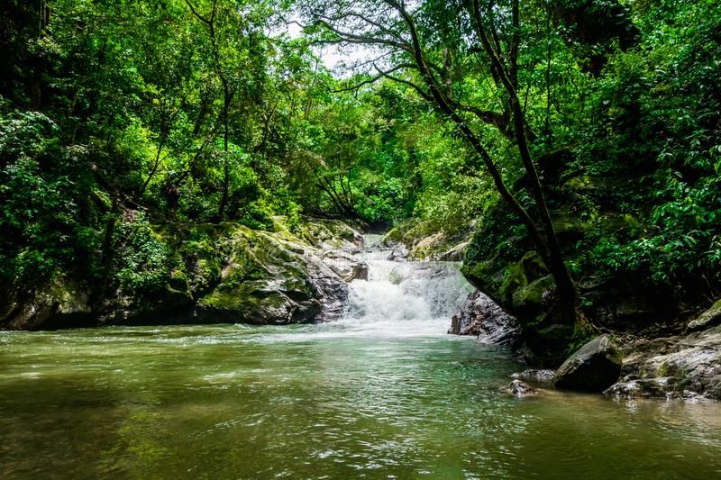 Beautiful outdoor view of the Minca waterfall surrounding of nature, Santa Marta, Colombia royalty free stock photography