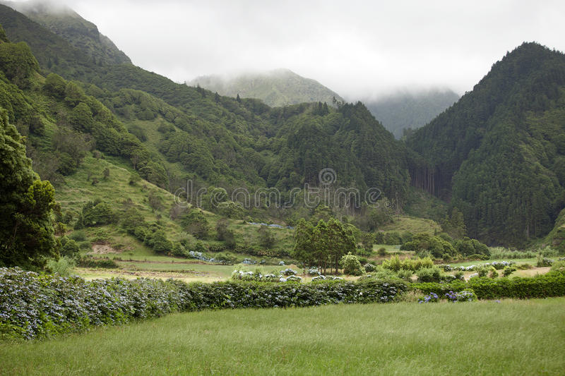Beautiful overgrown ancient volcanic mountains in Sao Michel, Azores. On the volcanic soils of the Azores you'll find a wide variety of lush vegetation royalty free stock images