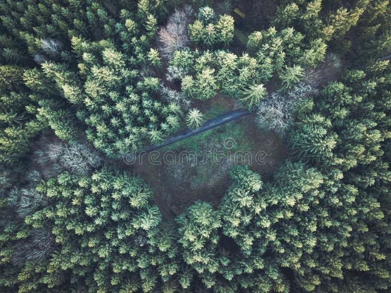 Beautiful overhead aerial shot of a thick forest stock photos