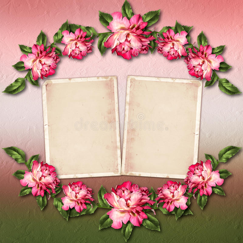 Beautiful Painted Rose With Frames For Congratulations Stock ...
