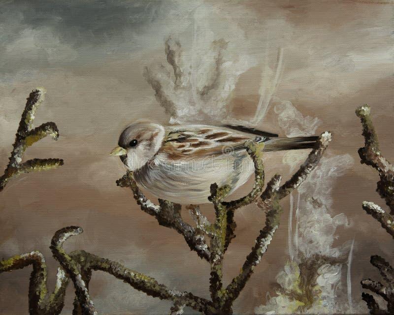 Beautiful painting of Spanish Sparrow stock photos