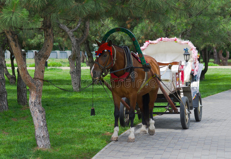 Download Beautiful Pair - Horse And Cart Stock Photo - Image: 25454542