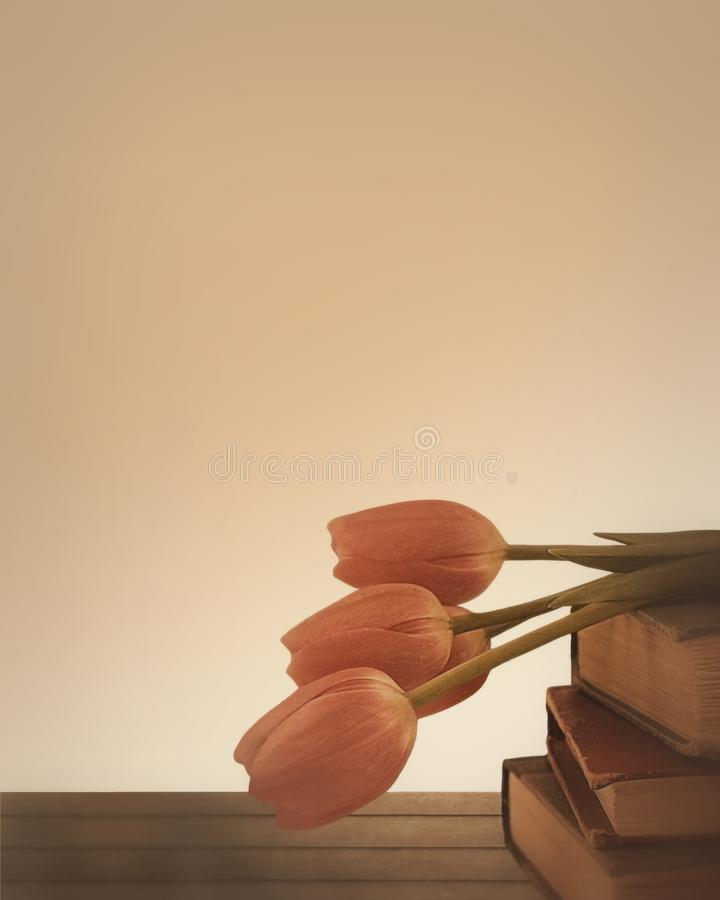 Free Beautiful Pale Pink Tulips Resting On A Stack Of Antique Books With Copy Space Stock Photo - 131798050