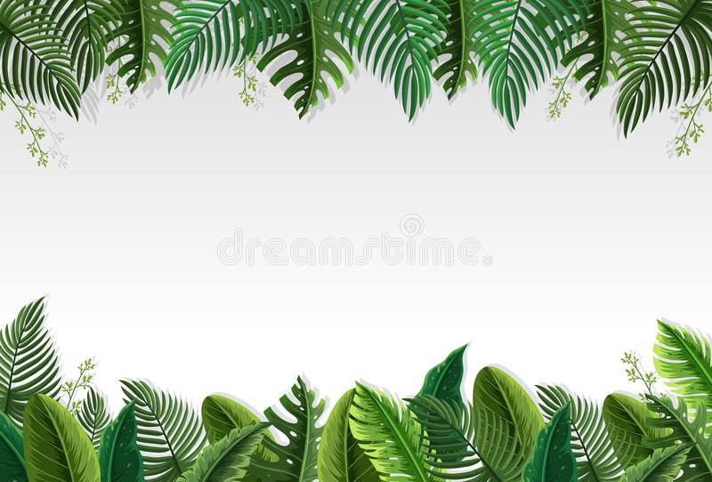 Beautiful palm leaf border royalty free illustration